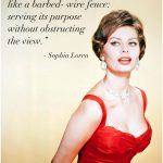 Ideas of the Red Dress Quotes